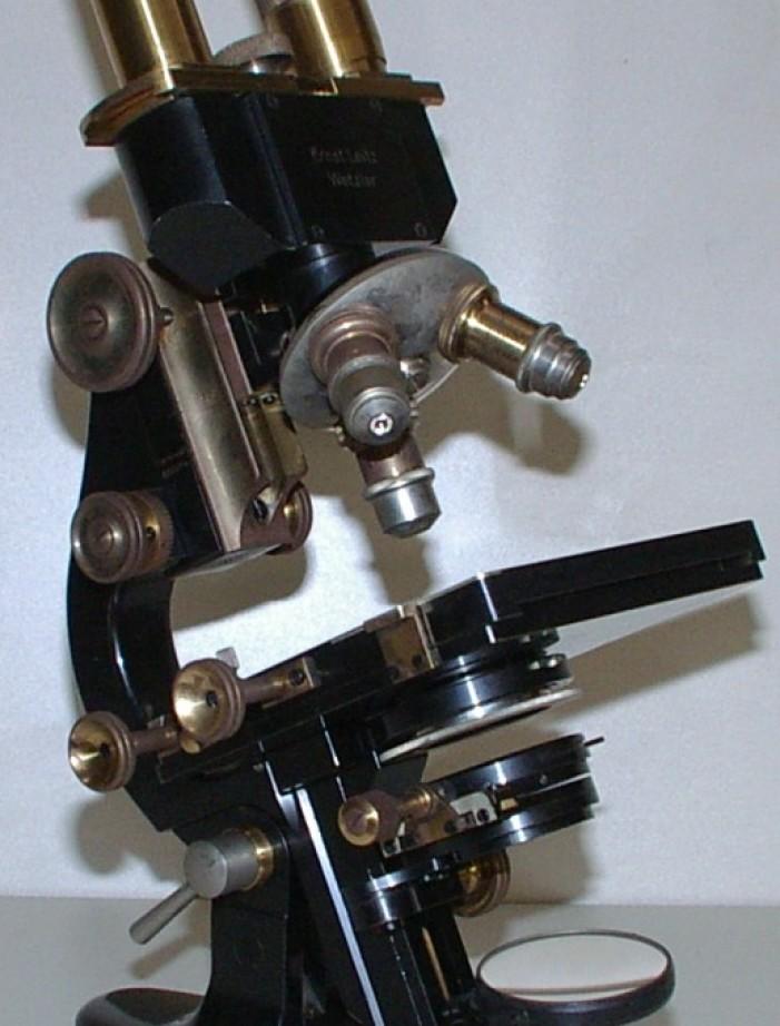Leitz Binocular Microscope per la salute